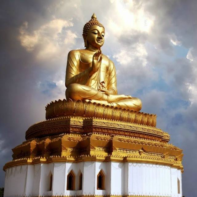 Buda Oro The golden glow of the Buddha