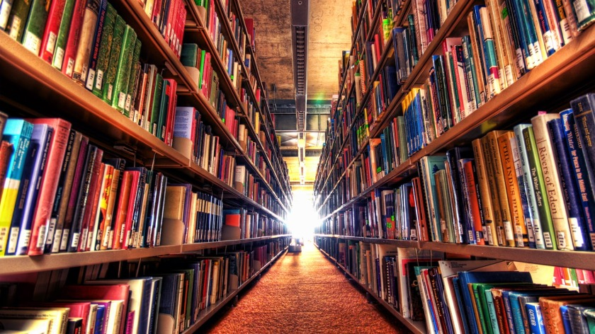 biblioteca grande